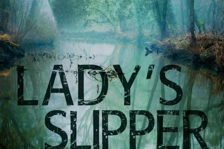 Alison Gray – Lady's Slipper